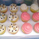 Cupcakes & Cody