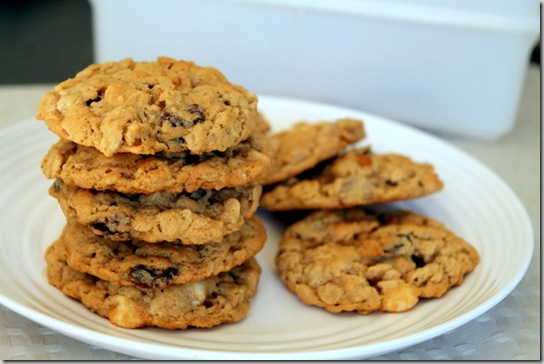 Loaded Oatmeal Peanut Butter Cookies (4)