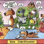 Things Making Me Smile–Christmas Humor