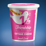 Friendship Dairies Giveaway {CLOSED}