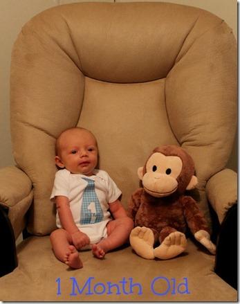 Lucas 1 Month