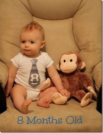 lucas 8 months
