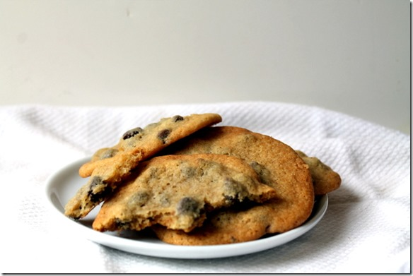 THE best Soft & Chewy Chocolate Chip Cookies