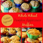 Whole-Wheat-Pumpkin-Applesauce-Muffins.jpg