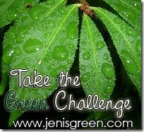 Photo 2 - greenchallenge