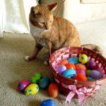 Cody's Easter