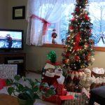 A Pretty Special Christmas