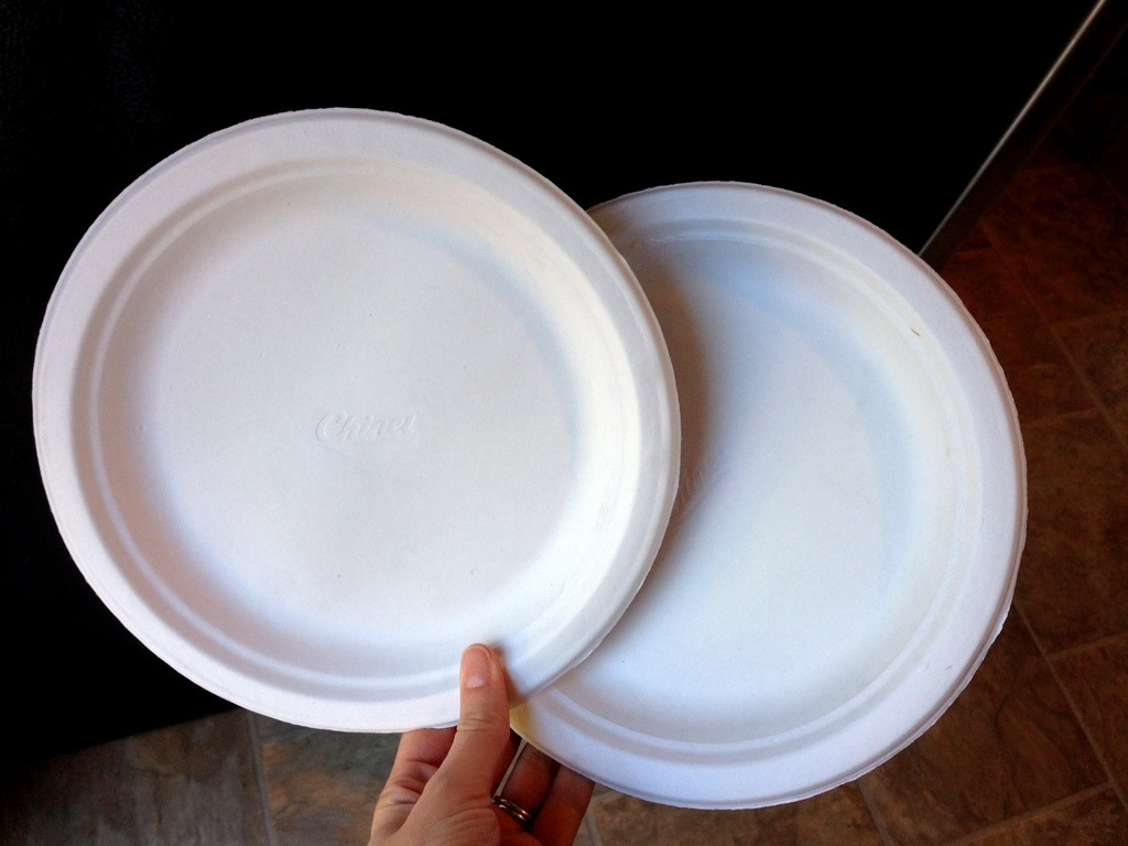Any size plates will do but he sure to stick with paper plates (as opposed to Styrofoam or plastic) and always position them right side up. & The Paper Plate Workout - Sweet Tooth Sweet Life